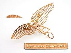 画像1: リリエンタールのデルヴィッツ型グライダー1891年式 (1)