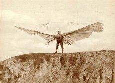 画像2: リリエンタールの羽ばたきグライダー1893年式 (2)