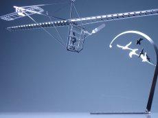 画像4: 人力飛行機 アルバトロス79 (4)