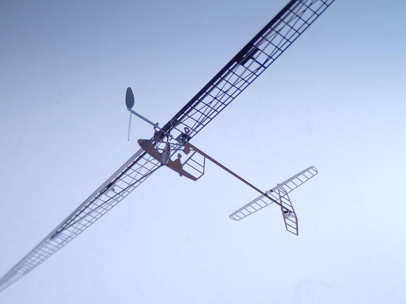画像1: 人力飛行機 ダイダロス88 (1)